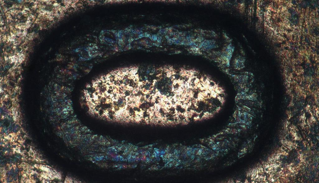 https://www.optikamicroscopes.com/optikamicroscopes/wp-content/uploads/2017/02/B-380_gallery_10-1024x588.jpg