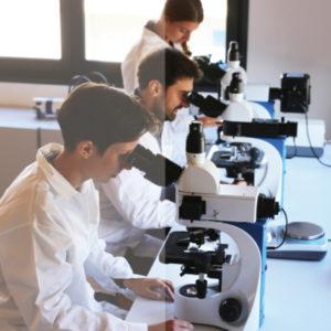 OPTIKAMICROSCOPES – Optika Microscopes Italy